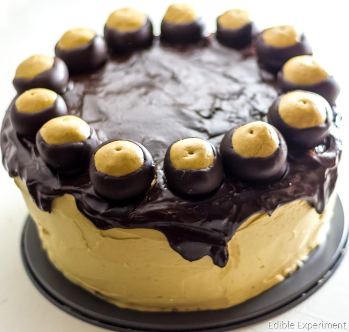 , Peanut Butter Cheesecake, Peanut Butter Frosting, Chocolate Glaze ...