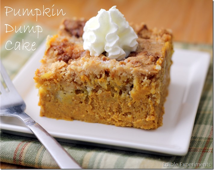 Pumpkin Dump Cake | Edible Experiments
